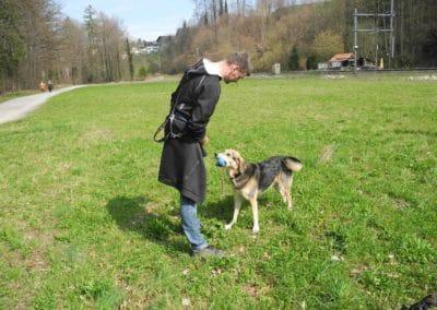 hund-und-Frank mit Cicco