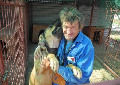 hund-und-Hund aus Tierheim Tierschutz
